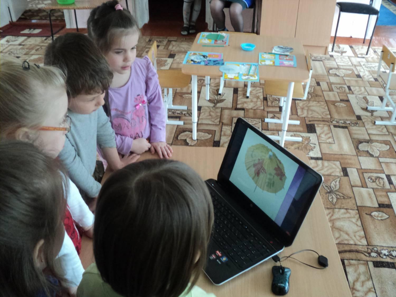 использование мультфильмов в работе с дошкольниками